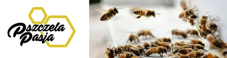 Pyłek pszczeli 300g (2)